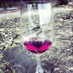 Weinglas schafis.ch